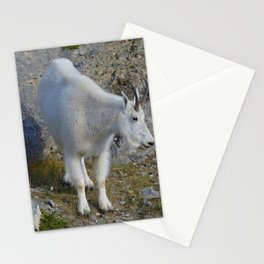 Mountain goat in the Canadian Rocky Mountains Stationery Cards
