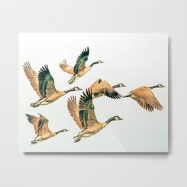 Fly Away || #photography #birds Metal Print