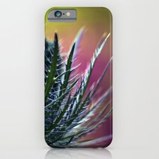 Colorful beauty iPhone 6s Slim Case