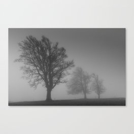 Morning Mist Trees - Landscape Photography Canvas Print