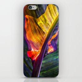 Natural Geometry / 3 iPhone Skin