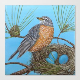 Robin with nest in Georgia pine tree Canvas Print