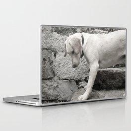 Croatian Lab Laptop & iPad Skin