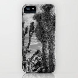 Joshua Tree National Park iPhone Case