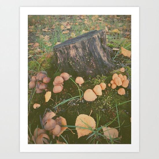 Mushroom Village Art Print