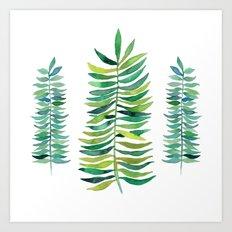 Three Ferns Art Print