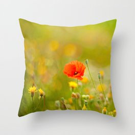 poppy flower in a field in summer Throw Pillow