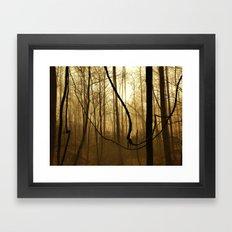 Foggy Appalachian Wilderness Framed Art Print