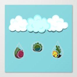 Succulent Shower Canvas Print