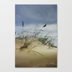 Dune and Beach Grass on Padre Island Canvas Print