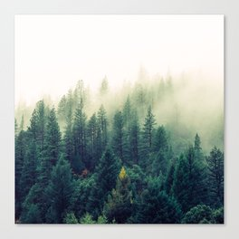 Ascension Canvas Print