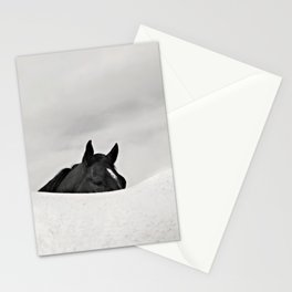 Horse Horizon Stationery Cards