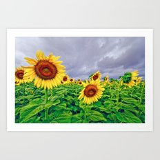 Enchanted Sunflowers Art Print