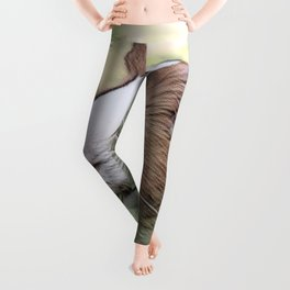 Impressive Animal - Guinea pig Leggings