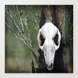 Warden of the Woods Canvas Print
