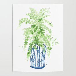 Ginger Jar + Maidenhair Fern Poster