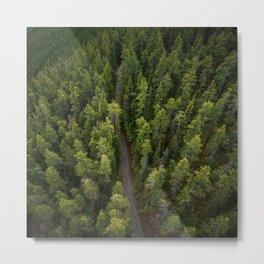 Gondola Banff  | Travel Alberta | Woods | Landskape Photography | Adventure | Trees Metal Print