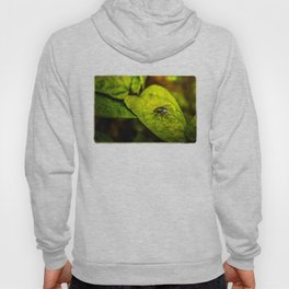 Fly in the green Hoody