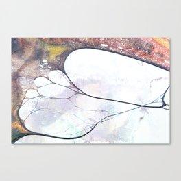 Fossils 45 Canvas Print