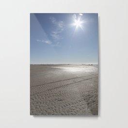 February sun Metal Print