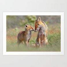 Fox Felicity - Mother and fox kit showing love and affection Art Print