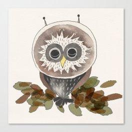 Owl - Sleeping Animals Canvas Print