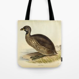 Pied billed Grebe Tote Bag