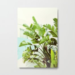 Banana Palms Metal Print