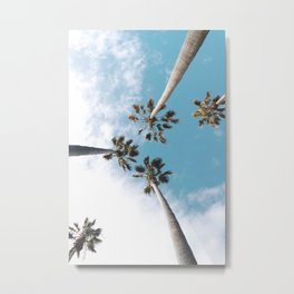 Palms Blue Sky Metal Print