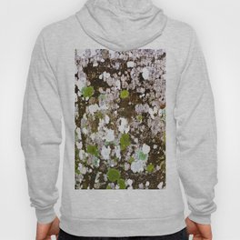 437 - Abstract Lichen Design Hoody