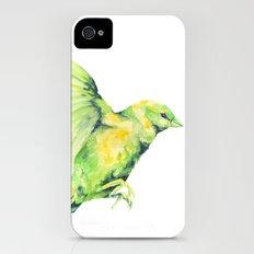Bird, Sparrow iPhone (4, 4s) Slim Case