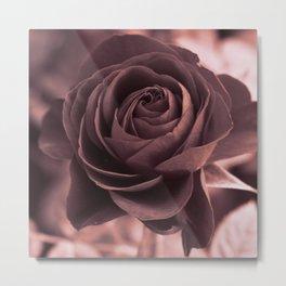 Romantic rose(purple grey). Metal Print