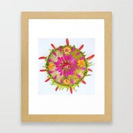 late summer mandala Framed Art Print