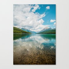 nature life Canvas Print