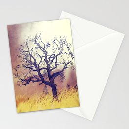 Solumn Stationery Cards
