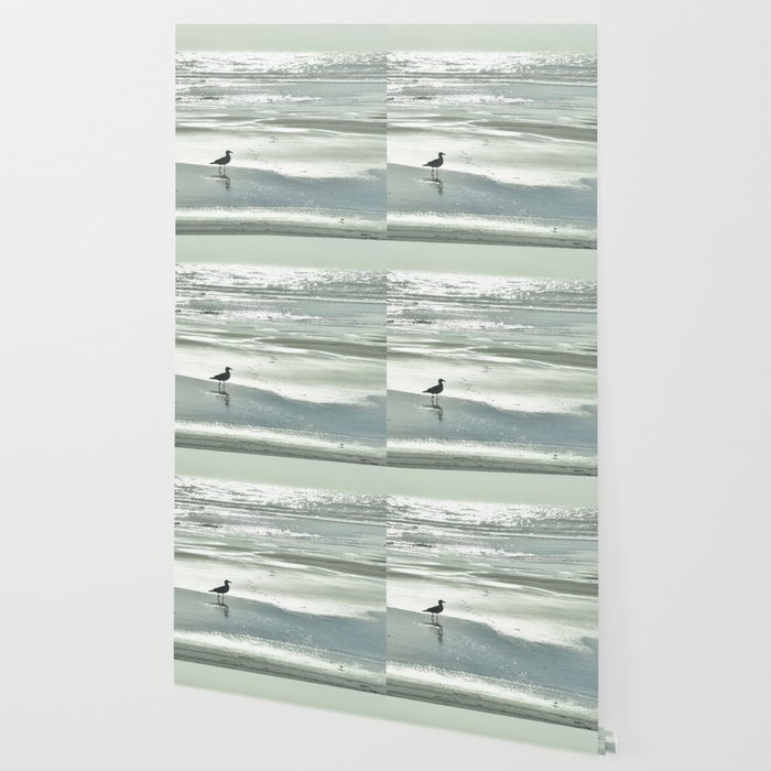 BIRDIE WALKING ON THE BEACH AT SUNSET Wallpaper