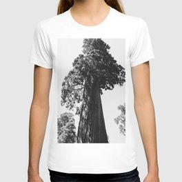 Sequoia National Park VI T-shirt