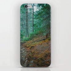 into the woods 04 iPhone & iPod Skin