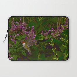 Male ruby-throated hummingbird and agastache 45 Laptop Sleeve
