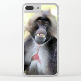 Portrait of a Gelada Baboon Clear iPhone Case