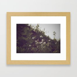 Flowers & Weeds Framed Art Print
