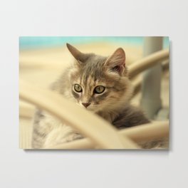 pussy at vacation Metal Print