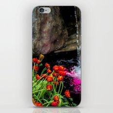 Waterfalls iPhone & iPod Skin