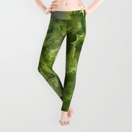 Spiked Leaf Plant Leggings