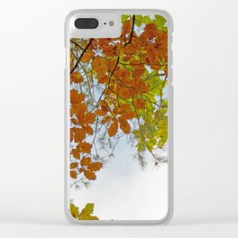 Autumnally sky Clear iPhone Case