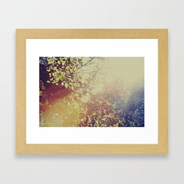 Afternoon Leaves Framed Art Print