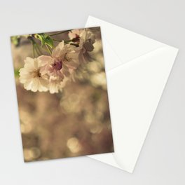 Cherry Blossom Bokeh Stationery Cards
