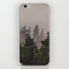 Mountaintop Forest iPhone & iPod Skin