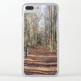 Follow me down... When the leaves come falling down... Clear iPhone Case