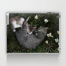 Sleep [A CAT AND A KITTEN] Laptop & iPad Skin